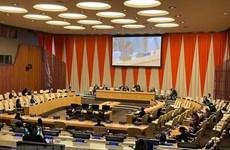 Vietnam concluye Mes de Presidencia del Consejo de Seguridad