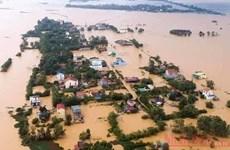 Lanzan en Vietnam concurso de videos sobre prevención y control de desastres naturales