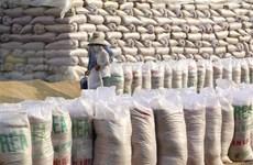 Vietnam conservará segundo puesto como exportador mundial de arroz