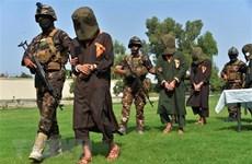 Vietnam respalda investigaciones de ONU sobre crímenes del Estado Islámico en Iraq