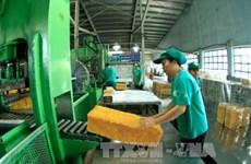 Vietnam registra fuerte aumento de exportación de caucho
