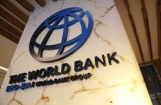 Banco Mundial aprueba Marco de Asociación País con Indonesia para período 2021-2025