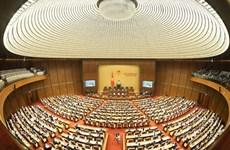 Valoran papel del Parlamento de Vietnam para el desarrollo nacional