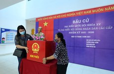 Embajador chino valora preparación de elecciones de Vietnam