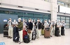 Reanudan envío de trabajadores vietnamitas a Corea del Sur