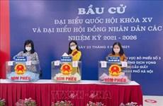 Medios de comunicación extranjeros publican artículos sobre las elecciones legislativas en Vietnam