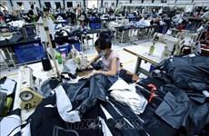 Aconsejan a empresas vietnamitas adoptar proactividad en exportaciones a la UEE