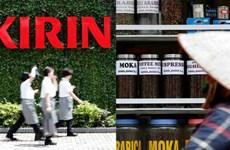 Empresa japonesa apoya a agricultores de café vietnamitas en producción sostenible