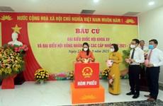 Registran alta tasa de participación electoral en mayoría de las localidades vietnamitas