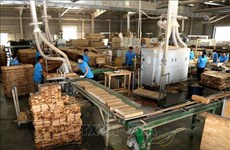 Exportaciones madereras de Vietnam aumentan 50,5 por ciento entre enero y abril