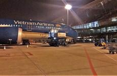 Envían casi 10 toneladas de lichi vietnamita a Japón por vía aérea