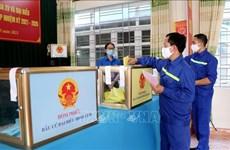 Realizarán segunda vuelta electoral en varias localidades vietnamitas