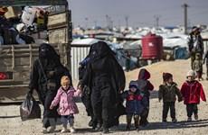 Destaca Vietnam importancia de solución política integral para Siria