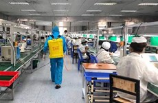 Gobierno vietnamita plantea acelerar vacunación contra COVID-19 para trabajadores