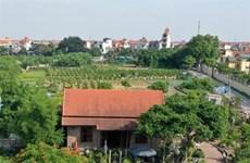 Plantas ornamentales entre principales productos agrícolas de Hanoi
