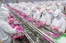 Crecen exportaciones de productos acuáticos vietnamitas entre enero y mayo
