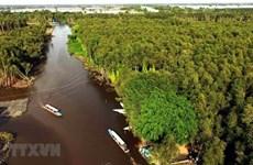 Vietnam trabaja por conservar los ecosistemas del Delta del río Mekong