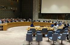 Vietnam apoya lucha contra la proliferación de armas de destrucción masiva