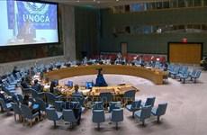 Vietnam destaca importancia del diálogo en lucha contra el terrorismo en África Central