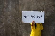 Embajada de Vietnam en Camboya advierte sobre situación compleja del tráfico humano