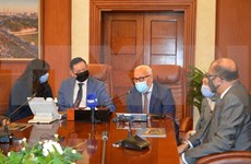 Localidades egipcias buscan promover cooperación con Vietnam