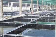 Ciudad Ho Chi Minh promueve uso de alta tecnología en cooperativas agrícolas