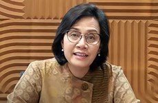 Indonesia por cumplir compromisos sobre respuesta a cambio climático