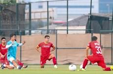 Equipo vietnamita de fútbol jugará mañana con acompañamiento de aficionados nacionales