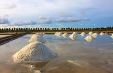 Vietnam busca desarrollo sostenible de la industria salinera de Can Gio