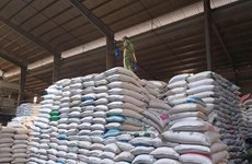 Vietnam será tercer mayor exportador mundial de arroz en 2022