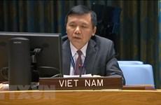 Vietnam llama a fortalecer la reconciliación nacional en Malí