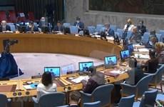 Vietnam llama a restablecer la paz y estabilidad en los Altos del Golán