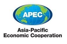 APEC debate reformas estructurales para la recuperación económica en pos del COVID-19