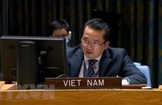 Vietnam apoya la salida de combatientes extranjeros y mercenarios de Libia