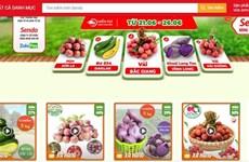 Venden productos agrícolas vietnamitas en plataforma de e-comercio Sendo