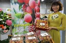Lichi fresco vietnamita capta atención de consumidores australianos