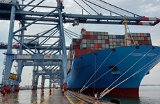 Aumenta envío de mercancías vietnamitas en contenedores marítimos