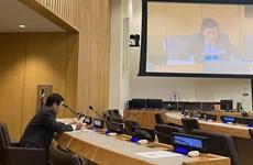Vietnam insta a cumplir plenamente Convención marítima de la ONU