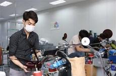 Vietnam dispone de potencialidades para atraer inversiones extranjeras directas
