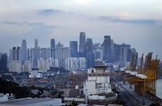 Aumenta número de nuevas empresas en Singapur a pesar de la pandemia