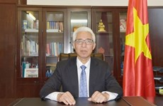 Resaltan buena marcha de nexos de cooperación Vietnam-China