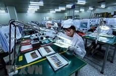 Vietnam, destino potencial para inversores británicos