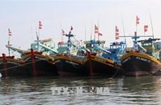 Provincia de Kien Giang refiuerza combate contra la pesca ilegal