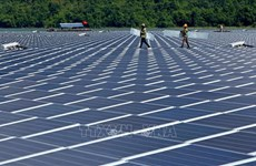 Resaltan esfuerzos de Vietnam en transición a energía limpia