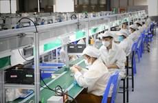 Vietnam ofrece nuevo paquete de apoyo al mercado laboral