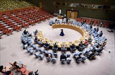 Vietnam exhorta a resolver desafíos de seguridad en África Occidental y el Sahel