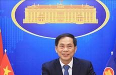 Diplomacia vietnamita debe ceñirse a política exterior del XIII Congreso partidista, afirmó canciller