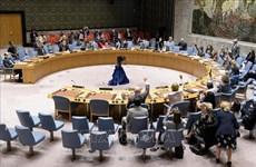 Vietnam pide poner fin a las acciones hostiles en Yemen