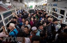 Sancionan a empresas vietnamitas relacionadas con empleados extranjeros ilegales