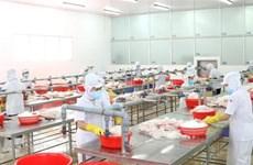 Vietnam: destino atractivo para empresas italianas
